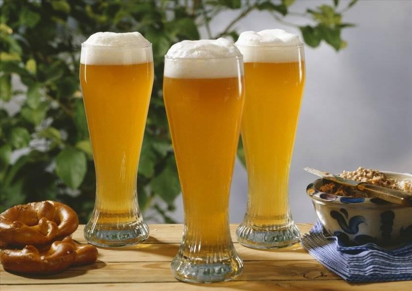 Простые рецепты хлебного пива для приготовления в домашних условиях