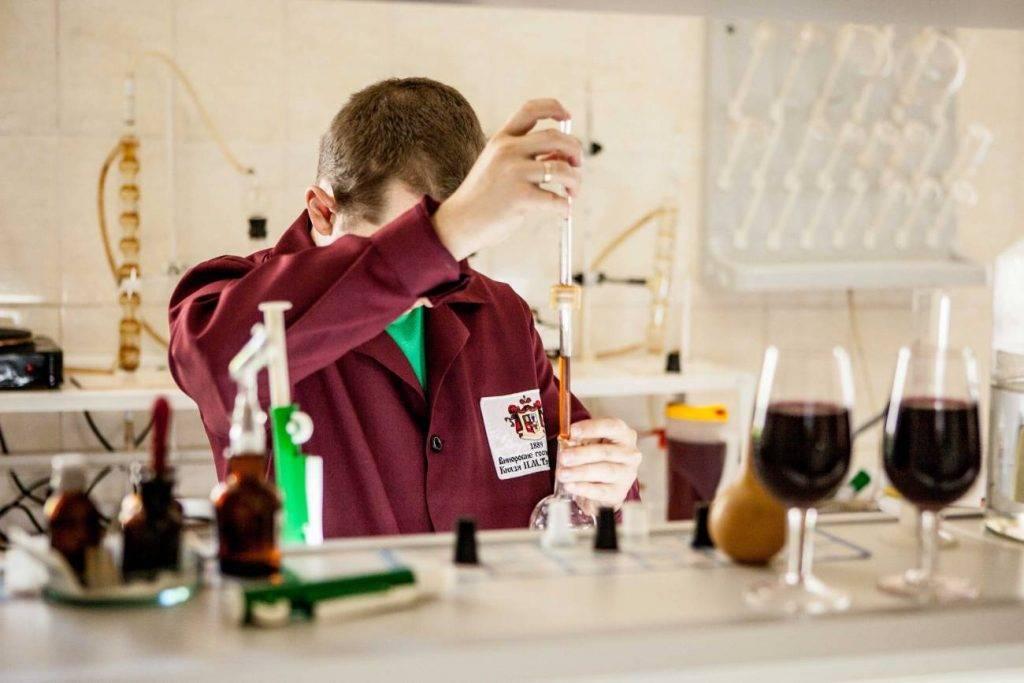 Правильная дегустация вина. от внешнего вида ко вкусу