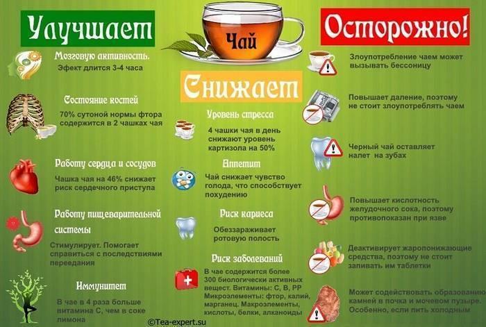 Чай с похмелья польза и вред