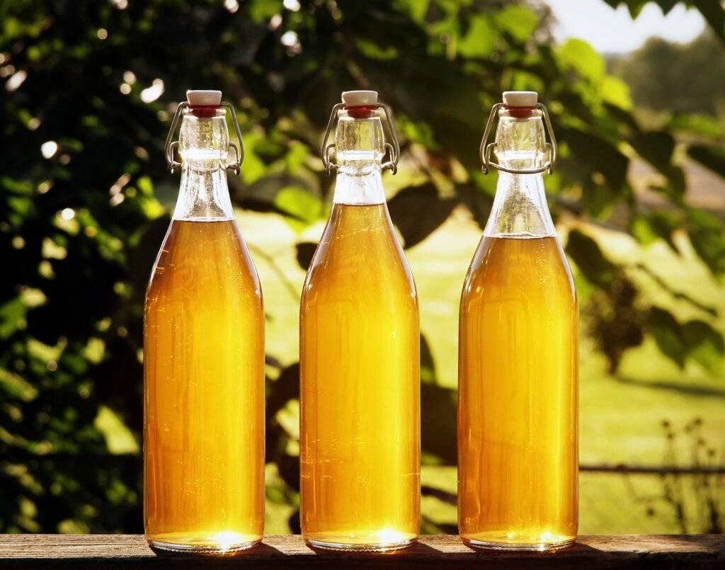 Рецепт медового вина