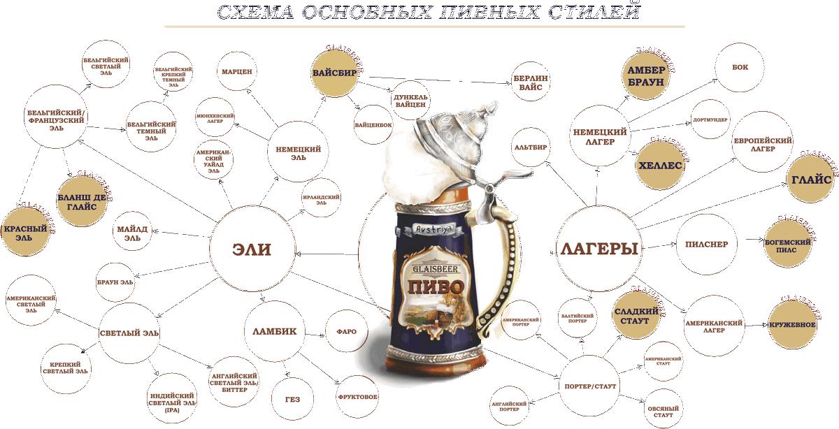 Производство пива: как делают пиво и весь процесс пивоварения   pivo.net.ua