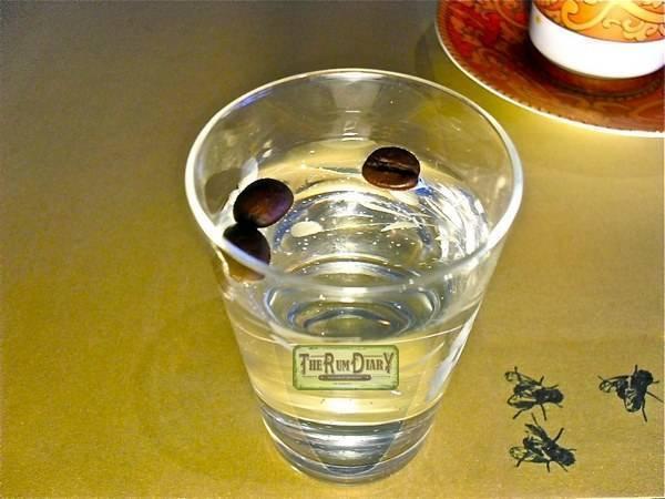 Как и с чем пьют самбуку: обзор напитков и блюд