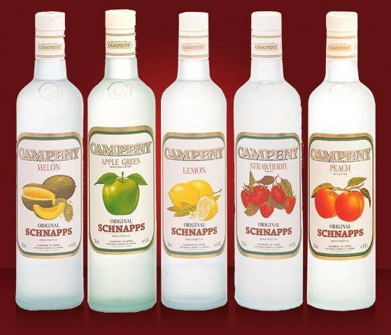 Шнапс – описание с фото напитка; его виды и свойства; польза и вред; приготовление в домашних условиях; как правильно пить; рецепты коктейлей. немецкий шнапс – больше, чем фруктовый самогон