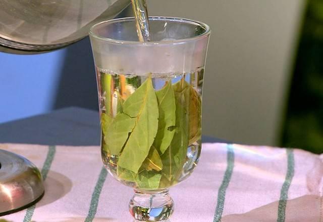 Лечение лавровым листом проверенные рецепты