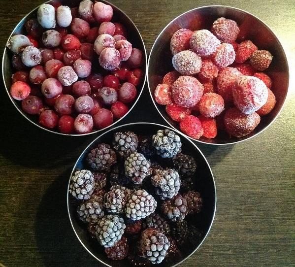 Подскажите как сделать домашнее вино из замороженных ягод / асиенда.ру