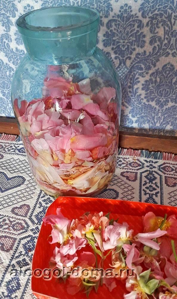 Что можно приготовить из лепестков роз – рецепты варенья, вина, настоек   дачная кухня (огород.ru)