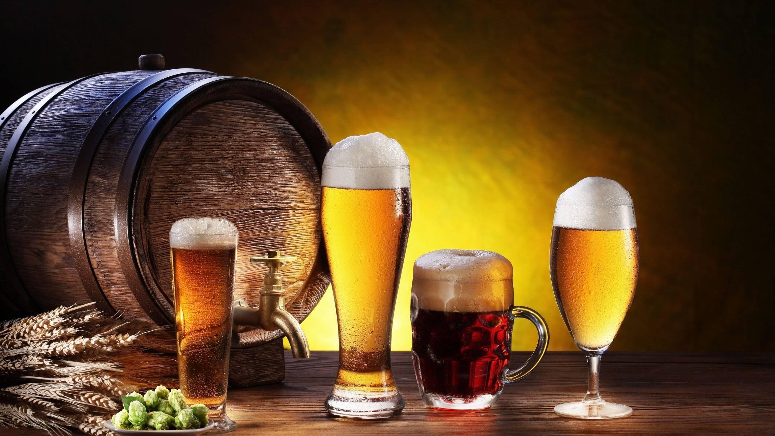 Бизнес план магазина разливного пива с финансовыми расчётами