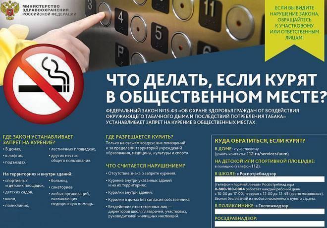 Можно ли курить айкос в тц: ограничения, запреты, отзывы