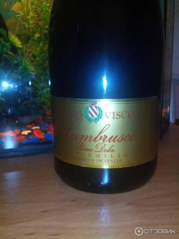 Игристое вино ламбруско и его особенности