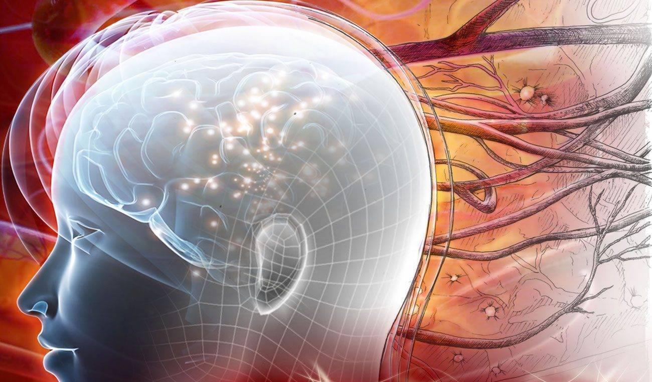 Не восстановятся теперь уж никогда. как свежее исследование поставило под сомнение реальность взрослого нейрогенеза у людей и что это может значить для науки