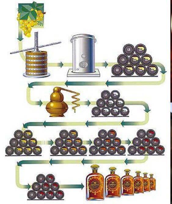 Технология производства рома. что такое ром, из чего его делают и как приготовить напиток в домашних условиях