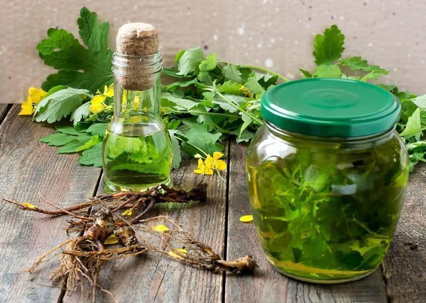 Настойка ромашки – волшебное средство, сразит наповал все болезни и бедствия!
