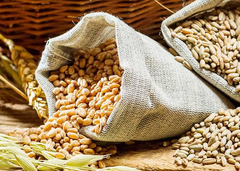 Самогон из пшеницы в домашних условиях - рецепты