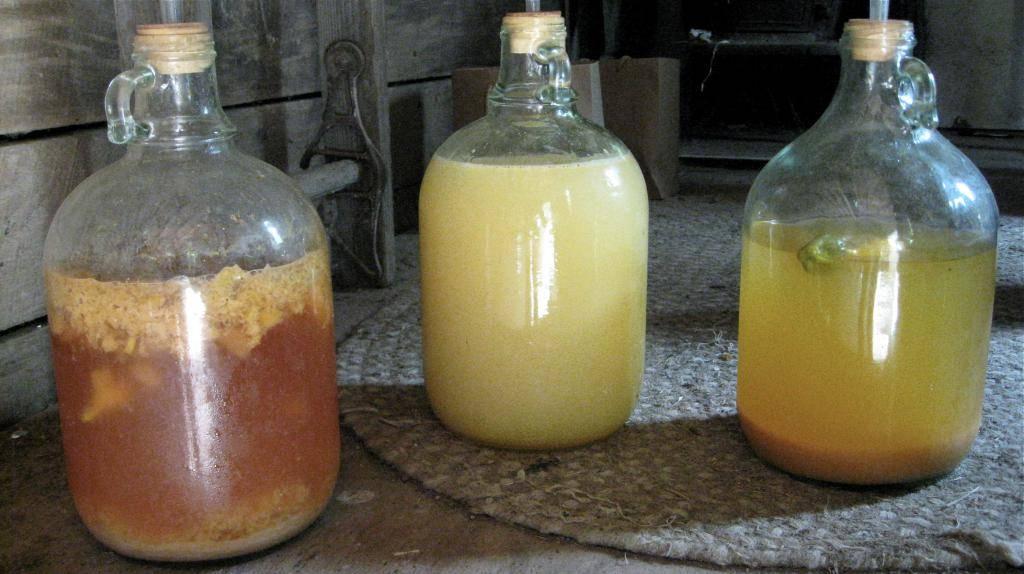 Как сделать брагу для питья: оригинальные рецепты на основе различных ингредиентов