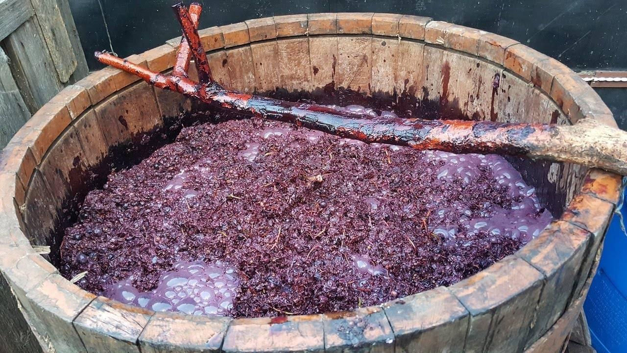 Чача из мезги винограда в домашних условиях