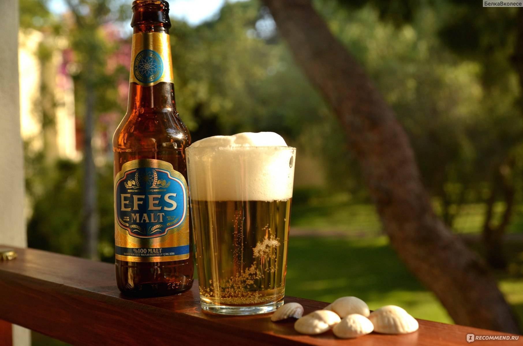 Чем могут отличаться лагер и эль - популярные виды пива?
