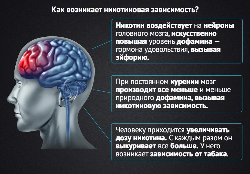 Какие изменения происходят в мозгу при курении? влияние курения на мозг и интеллект.