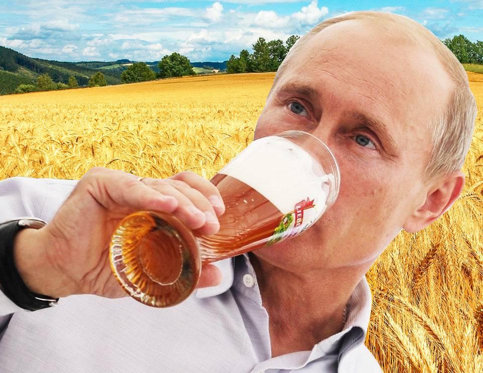 Как выбрать пиво? — 8 советов для покупателя