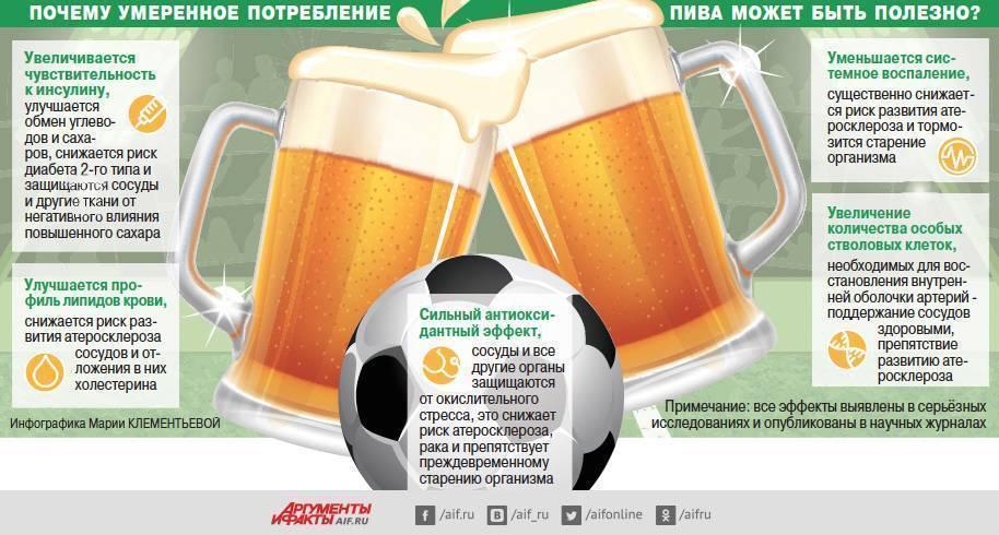 Пиво, польза и вред для мужчин
