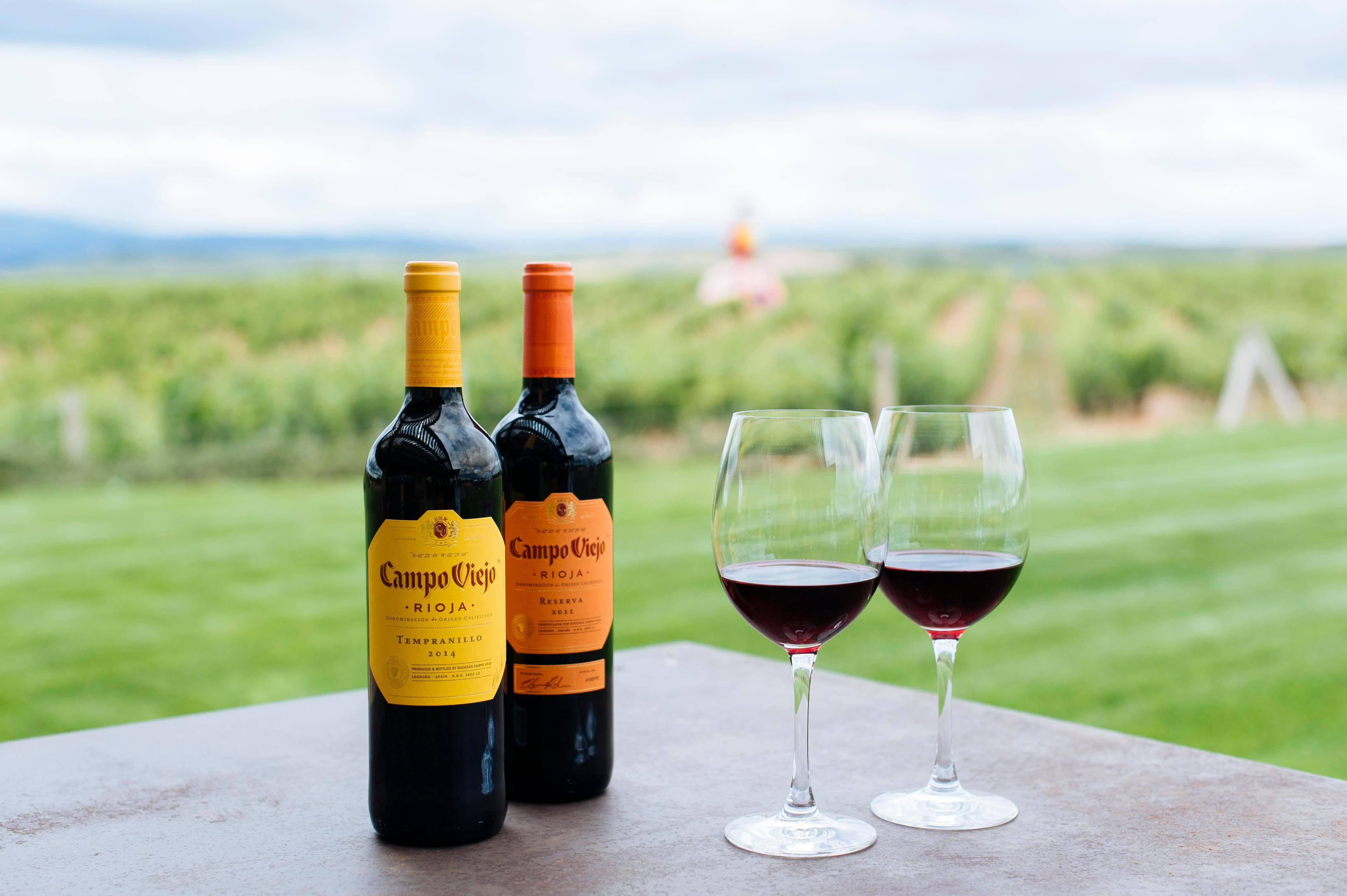 Вино риоха-особенности региона, характеристики, марки
