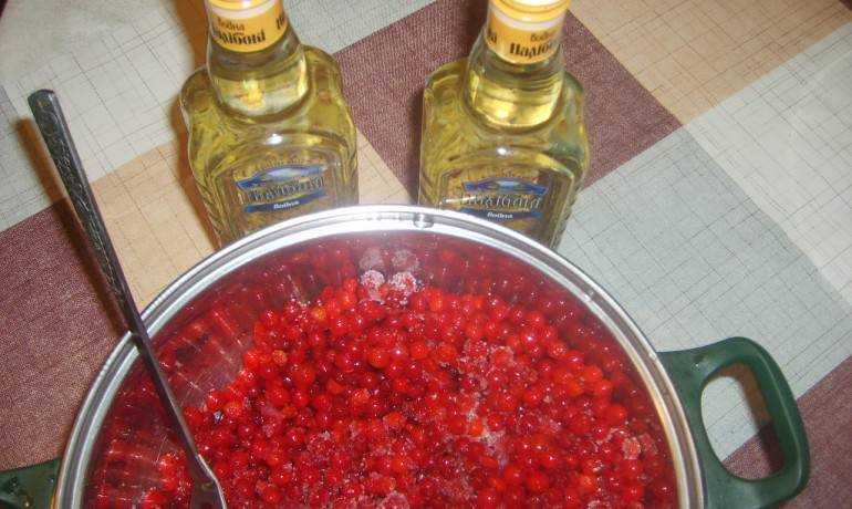 Как приготовить вино из калины в домашних условиях: рецепт