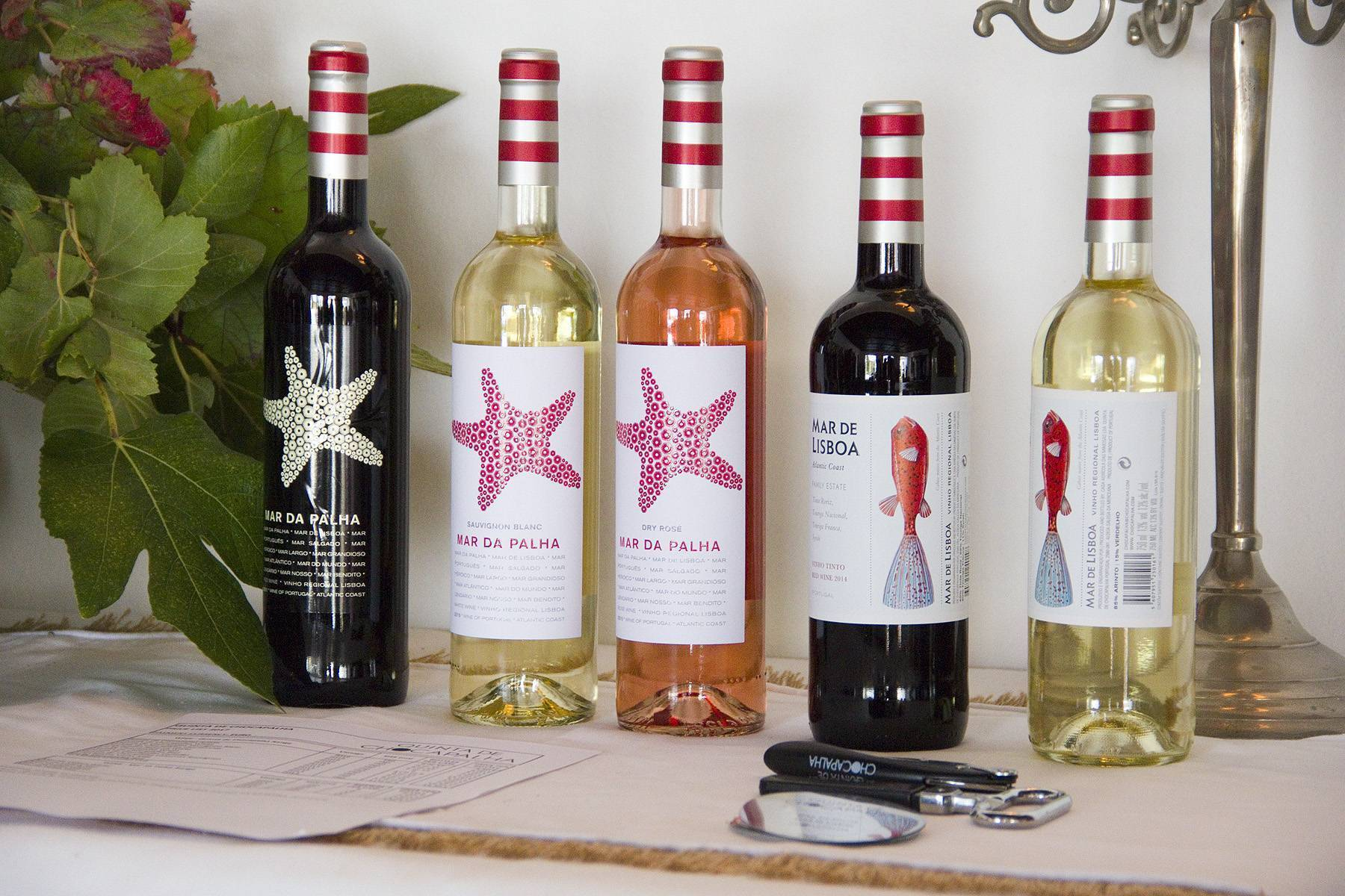 Изготовление плодово-ягодных вин [1991 дружинин в.в., константинов е.б. - виноделие на дому]