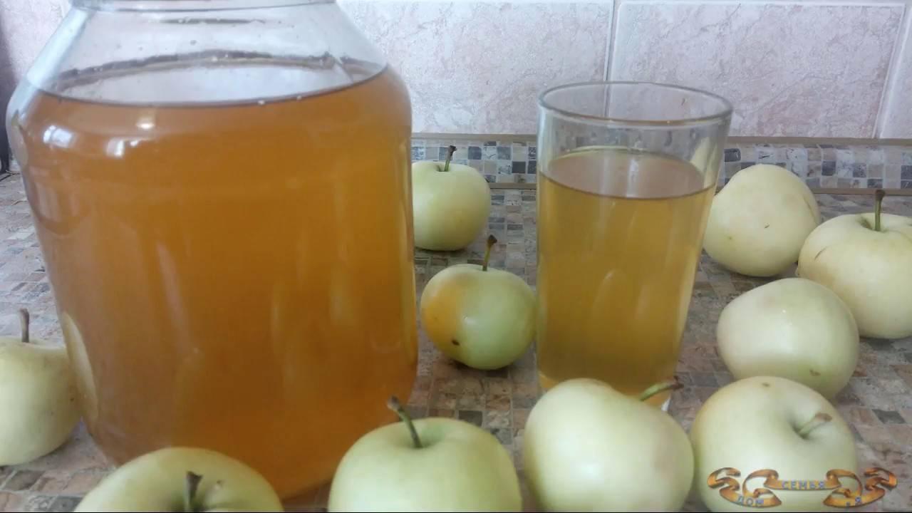 Как приготовить кальвадос из яблок в домашних условиях