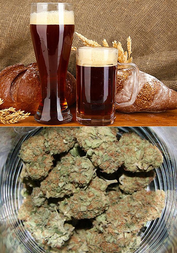 Рецепт приготовления ячменного пива