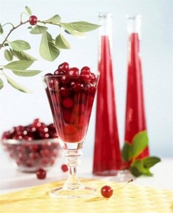 Ликер из вишни в домашних условиях: простые рецепты приготовления, как сделать вишневый ликер своими руками