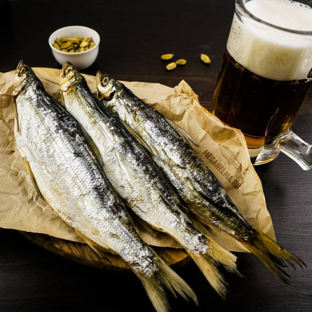 Рыба к пиву - выбираем лучший вариант + видео | наливали