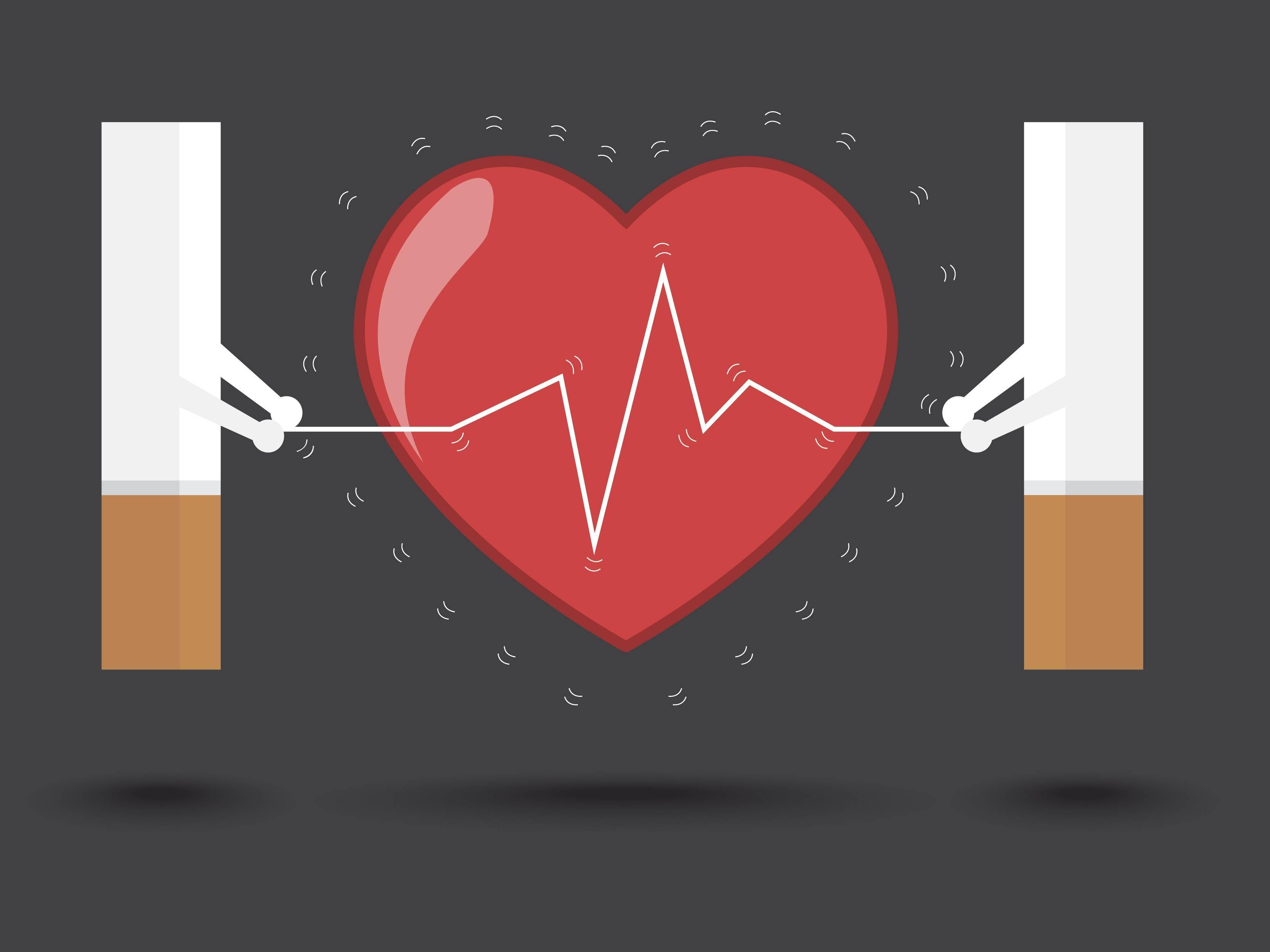 Может ли от курения болеть сердце и как еще влияет никотин на сердечно-сосудистую систему человека?
