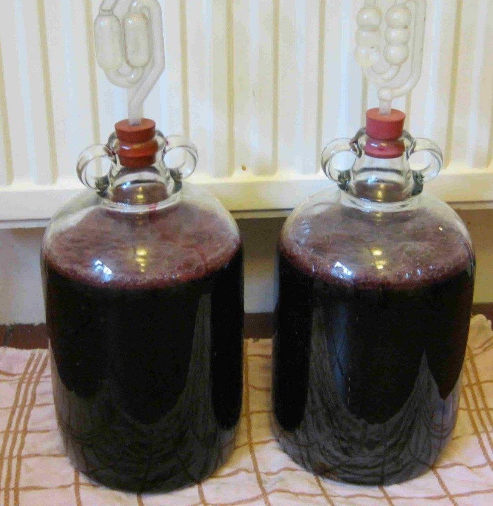 Рецепты браги из винограда для самогона в домашних условия