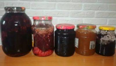 Как приготовить вино из терна в домашних условиях