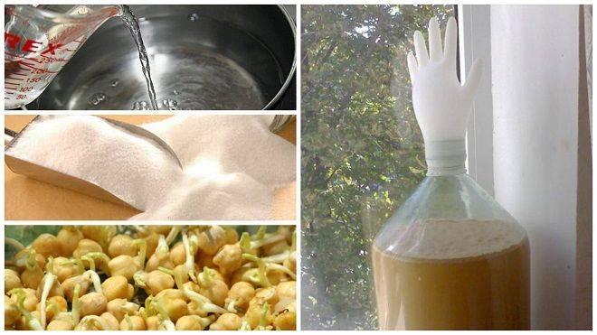 Рецепт бурбона, или самогон из кукурузы в домашних условиях