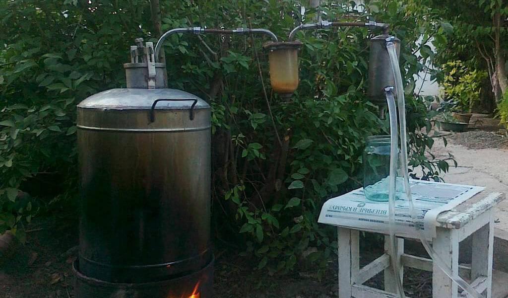 Как приготовить, хранить и употреблять чачу из винограда в домашних условиях? полезные советы