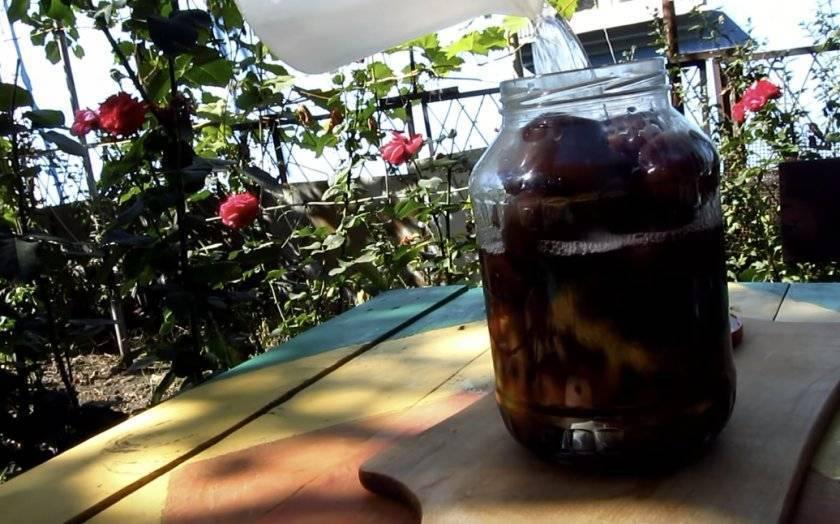 Самогон из сливы: рецепты и особенности