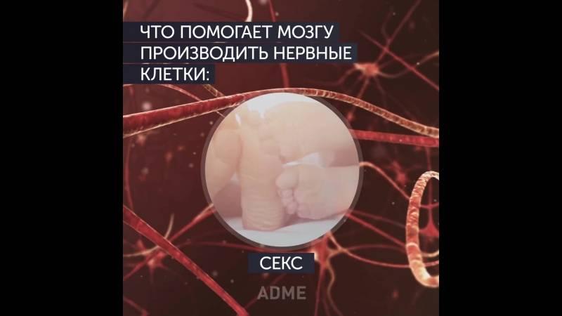 Как восстановить нервные клетки, эффективные препараты