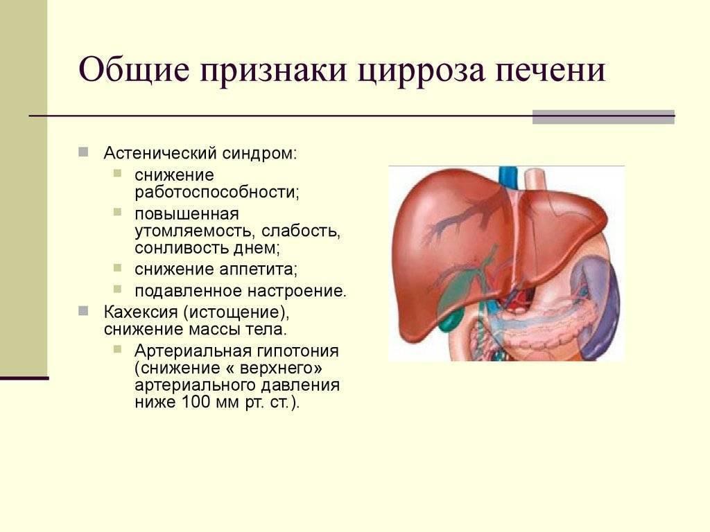 Отказ печени: причины, симптомы, методы диагностики, лечения - сила и здоровье