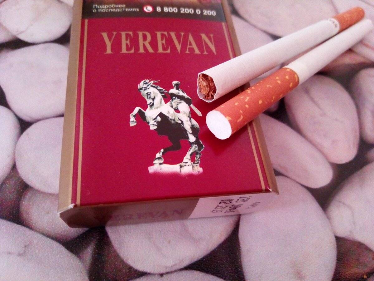 Самые лучшие марки сигарет с натуральным табачным вкусом, которые продаются до сих пор