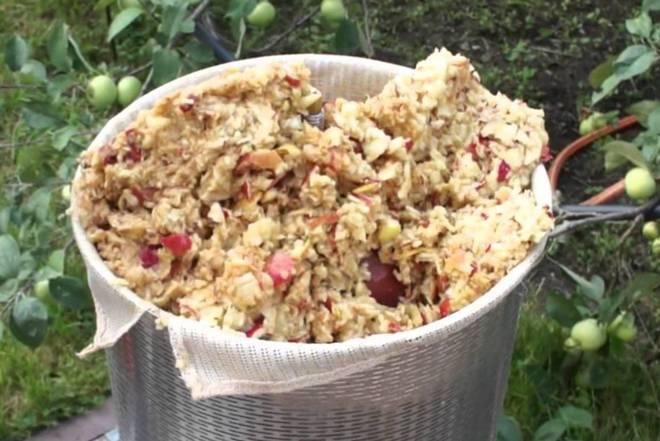 Пастила из жмыха: как сделать пастилу из яблочного жмыха и других фруктов в домашних условиях