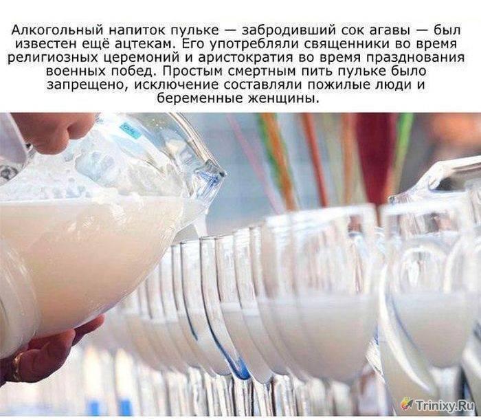 Алкоголь - горячие посты - стр. 15