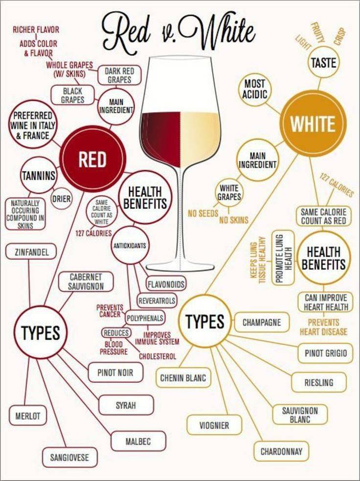 Виды вина?: какие есть сорта и их описание, классификация по категориям с подробной таблицей [2018], в чем бывают отличия, понятие формы | suhoy.guru
