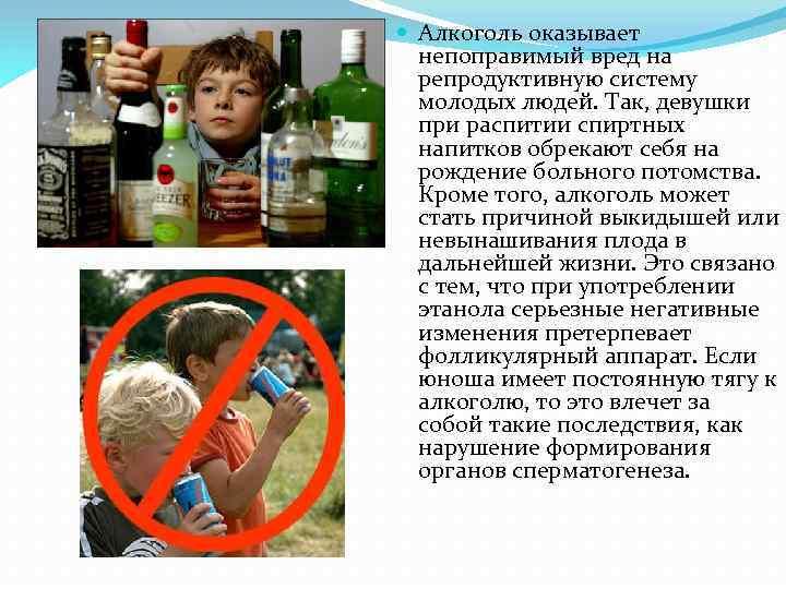 Что говорит о вреде алкоголя жданов
