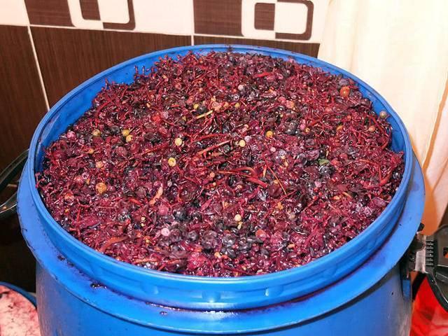 Домашнее вино из вишни горчит. как убрать горечь из вина в домашних условиях