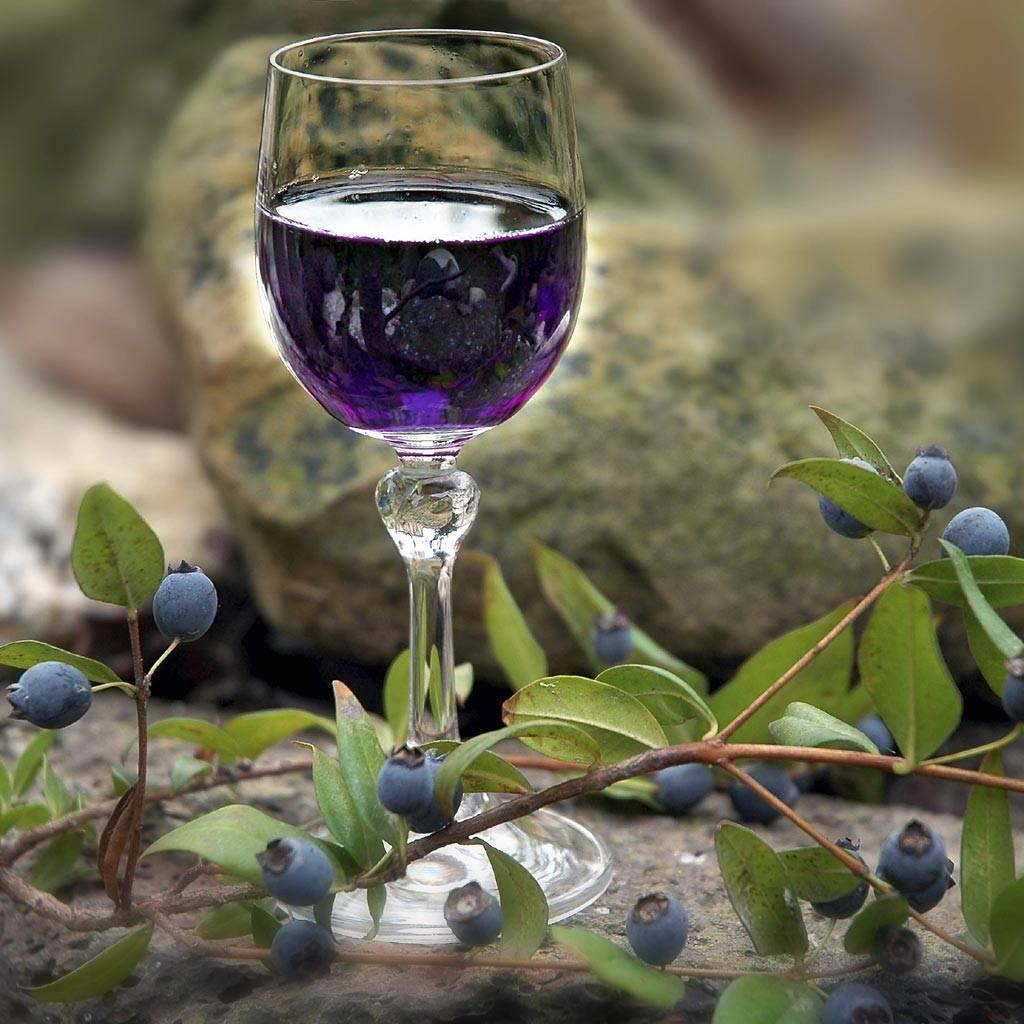 Вино из ирги в домашних условиях - пошаговый рецепт
