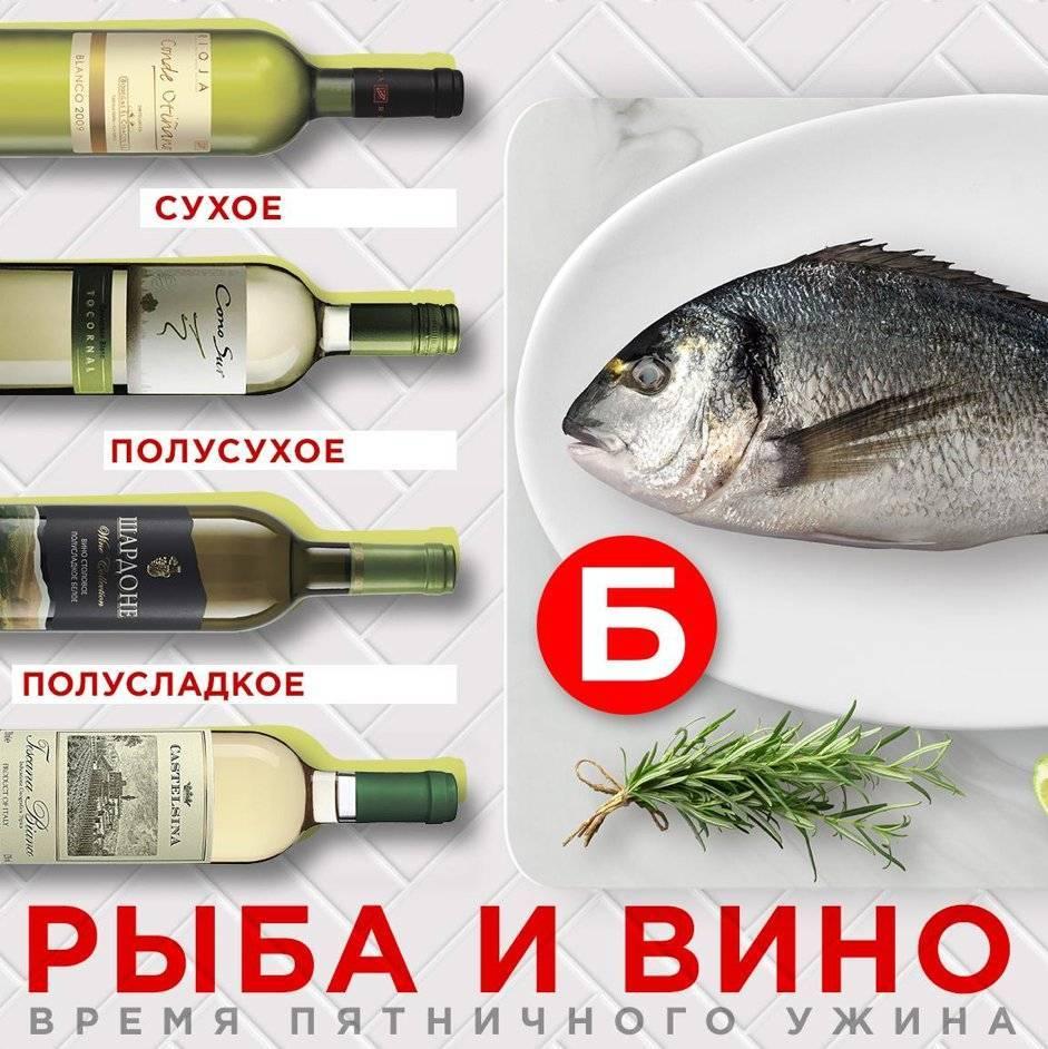 Какое вино подают к рыбе: особенности и рекомендации