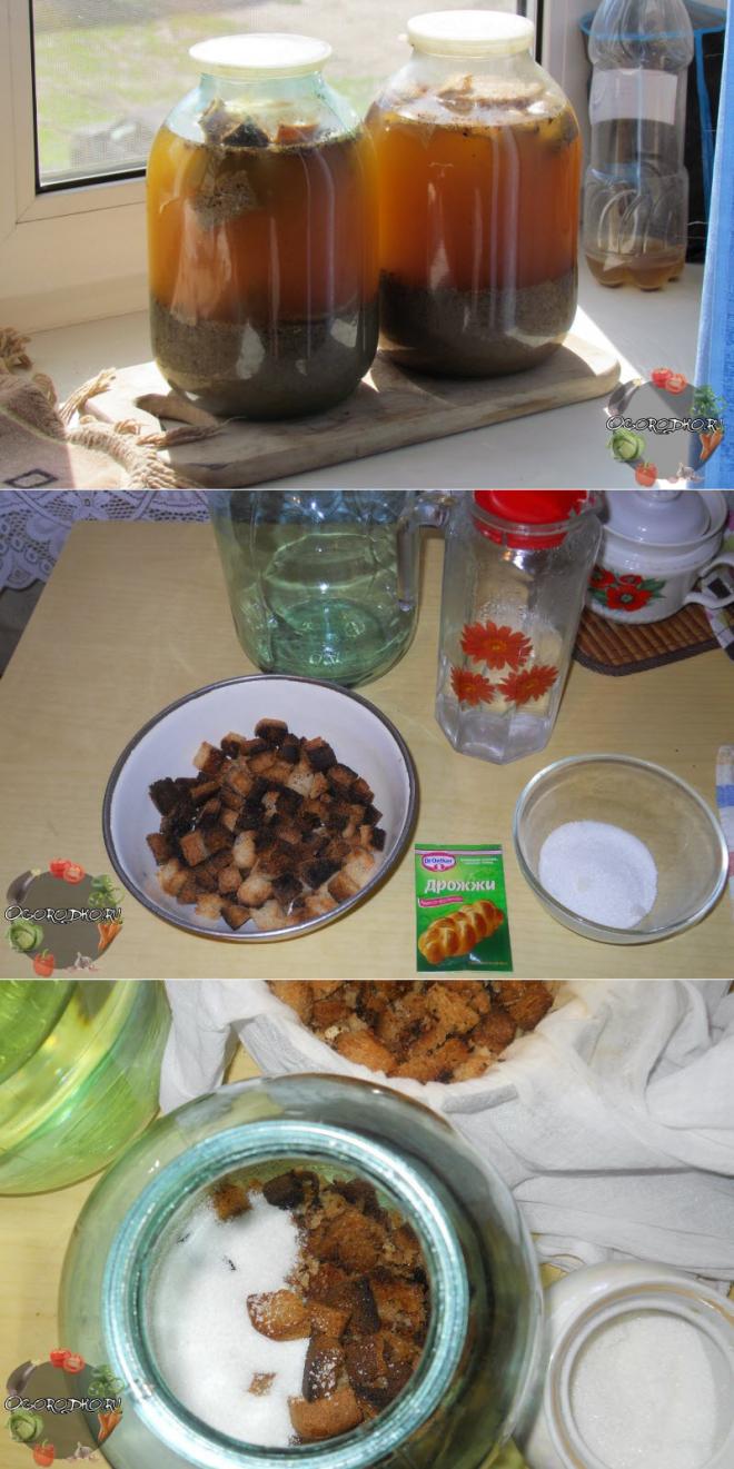 Квас хлебный (8 рецептов с фото) - рецепты с фотографиями на поварёнок.ру