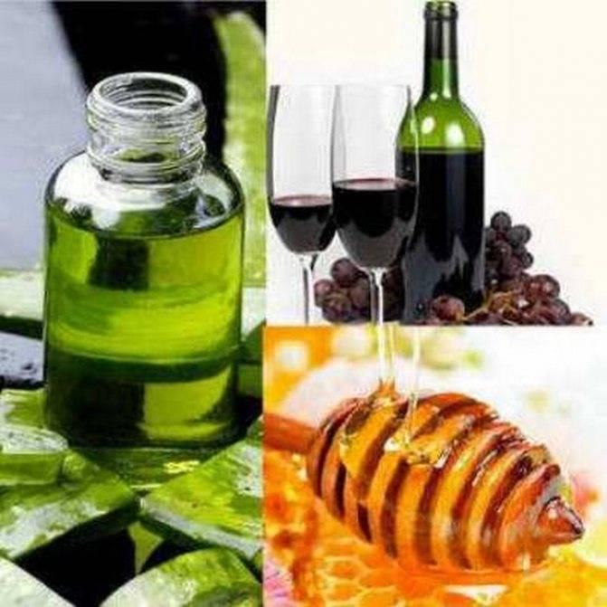 Алоэ вера с медом: лечебные свойства и противопоказания смеси, рецепты и как приготовить, в том числе средство от кашля, с кагором для легких, с водкой для желудка?