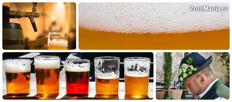 Фильтрованное и нефильтрованное пиво. в чем разница и какое лучше? | любитель пива | яндекс дзен