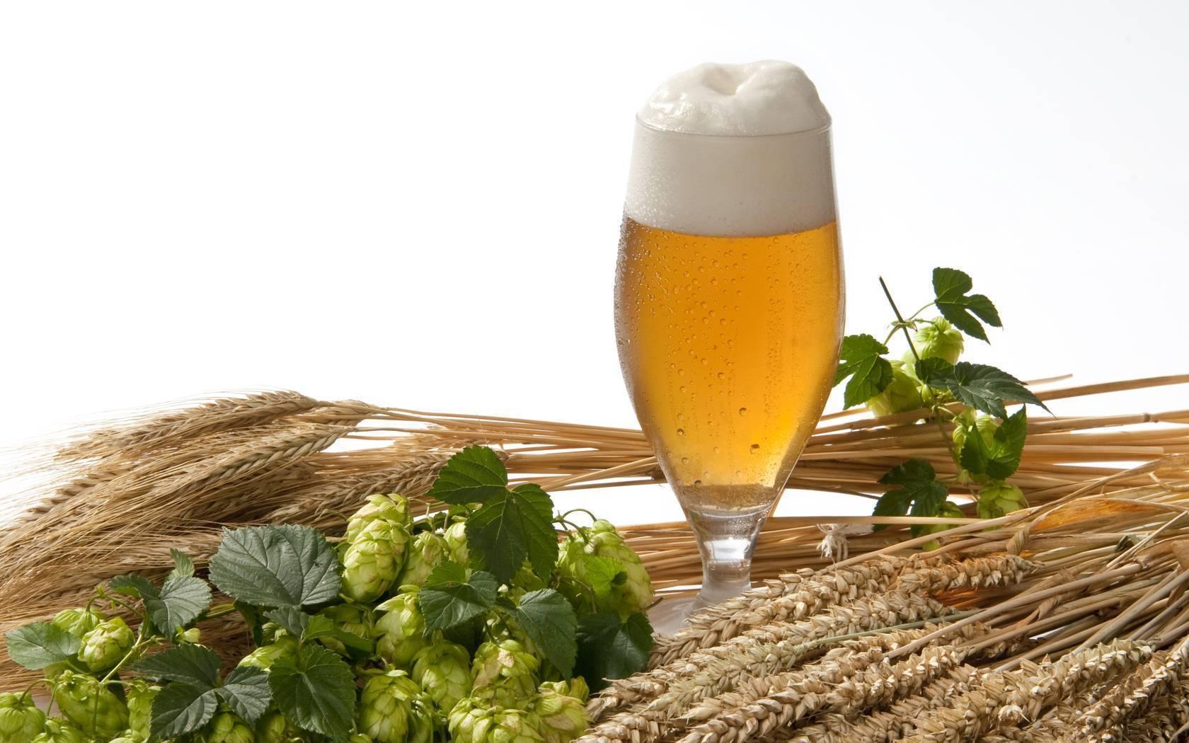 Как пиво влияет на давление. повышает или понижает? можно ли пить? | любитель пива | яндекс дзен